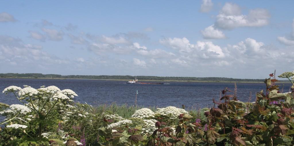 Binnenvaartschip op lauwersmeer